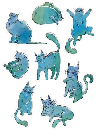Cats Composition I