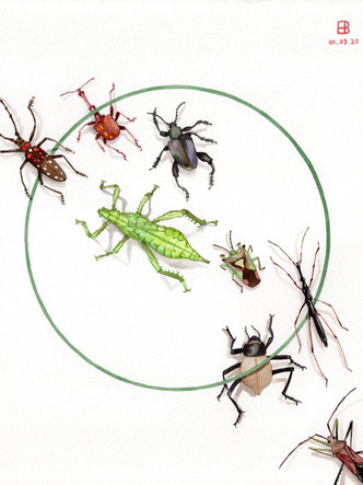 The March of the Mantid