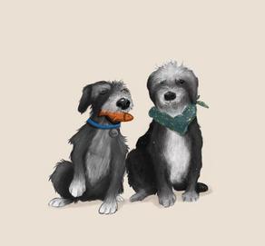Dogo Friends