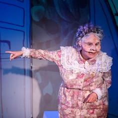 """""""Comme à chaque création de L'Efrangeté, on y sent l'étroite complicité entre la metteure en scène Sylviane Tille et la scénographe Julie Delwarde, dont les masques et costumes ne cessent d'émerveiller. """"  La Liberté"""