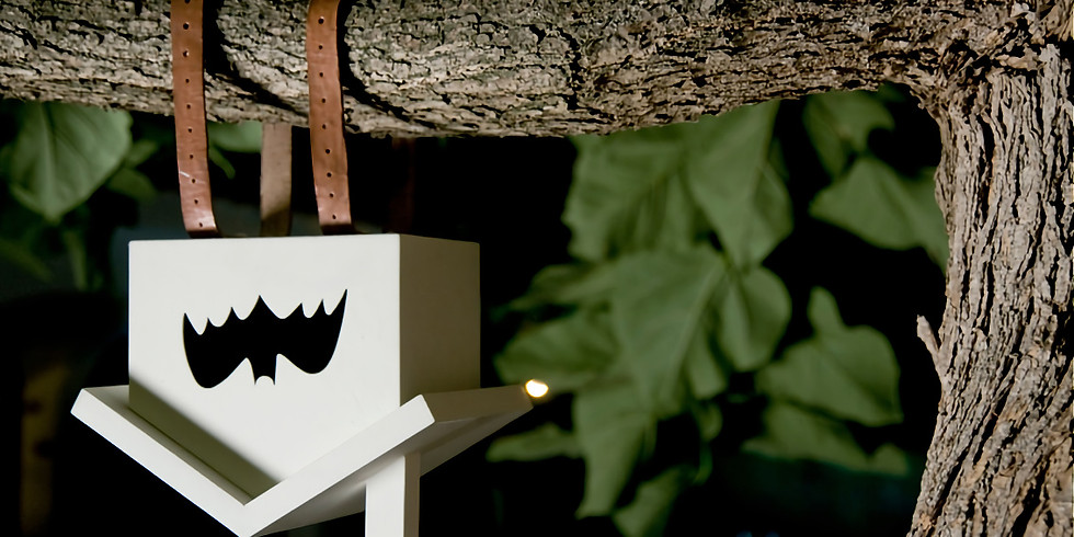 Kids Bat House Workshop