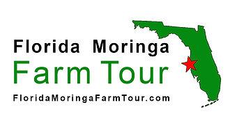 florida-moringa-farm-tour.jpg