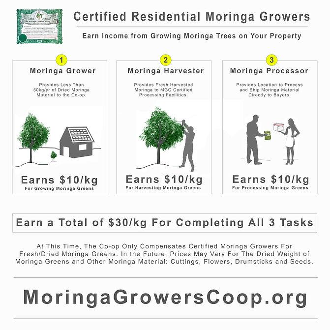 Moringa-Coop-Positions-compensation.jpg