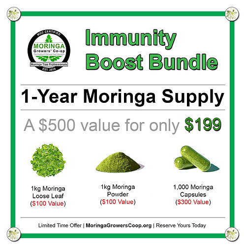 Immunity Boost Bundle   1 Year Moringa Supply