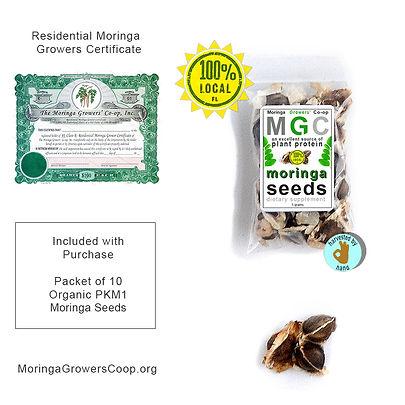 mgc-seeds-with-certificate.jpg