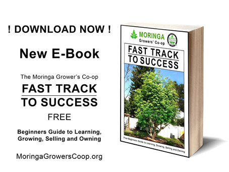 New E-Book: Fast Track To Success The Free Beginners Guide to Learning, Growing, Selling and Owning