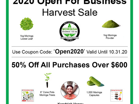 2020 Open For Business Moringa Harvest Sale