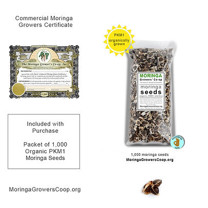 mgc-seeds-with-certificate-commercial.jp
