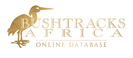 DATABASE LOGO.png