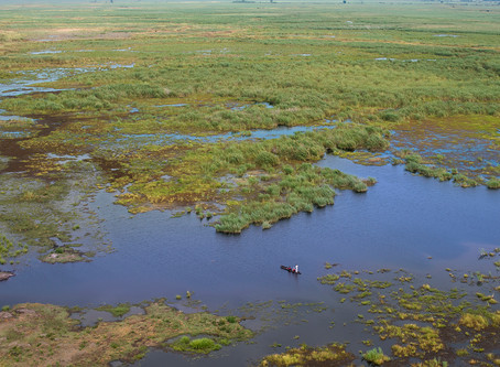 New luxury mobile safari camp expected in Botswana