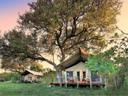 8._khwai_tented_camp_botswana___bedrooms