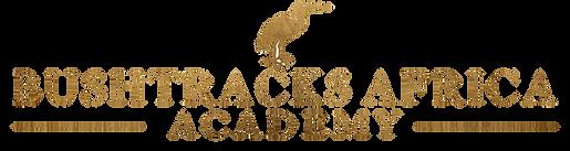 Bushtracks Academy Logo 2.png