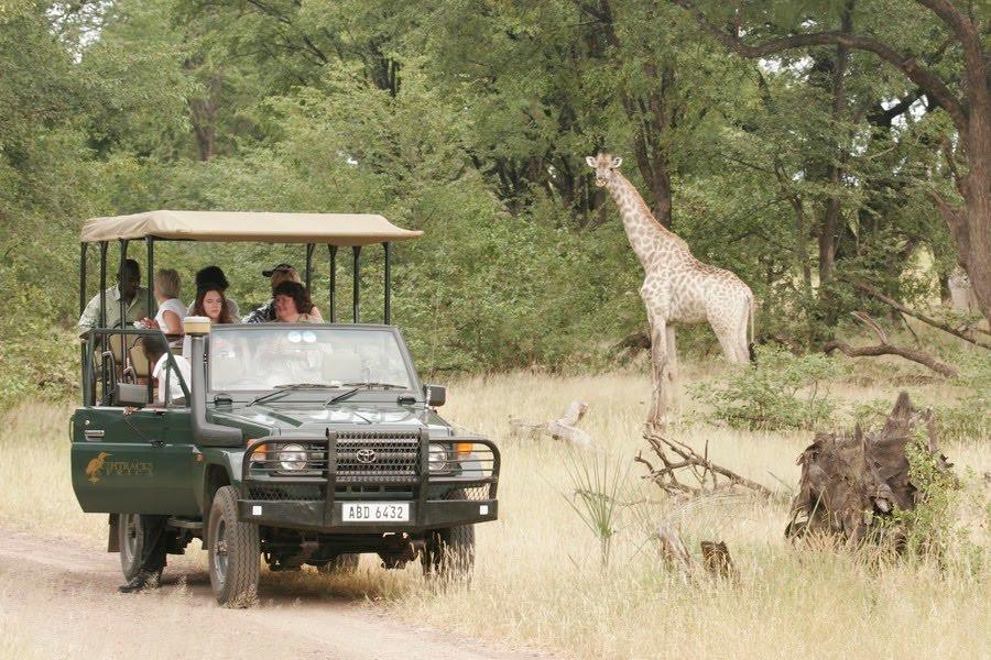 Zambia game drive.jpeg