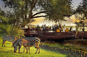 The Sundeck with zebras in the foregroun