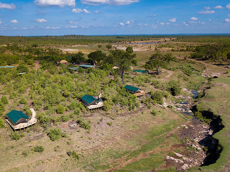 Machaba Safaris to open 2 new camps in Hwange National Park, Zimbabwe