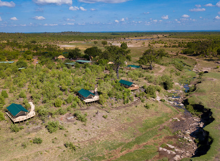 Machaba Safaris to open 2 new camps in Hwange National Park, Zimbabwe