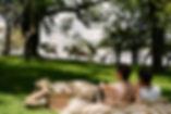 rl_dining_picnic_zebras_lifestyle_05_g_a