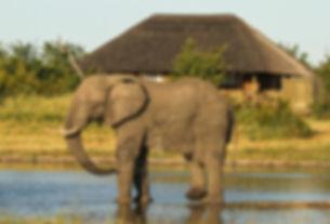 17._imvelo_safari_lodges_-_nehimba_-_cam