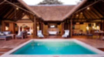 cc_safari_suite_main_close_up1.jpg