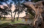 khwai_bush_camp_botswana_african_bush_ca