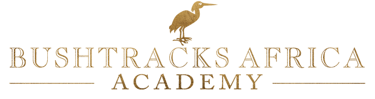 Bushtracks Academy Logo 2.png