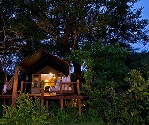 sanctuary-stanleys-camp-room-at-night1 c