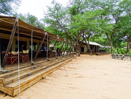 24 hours at Verney's Camp, Hwange National Park