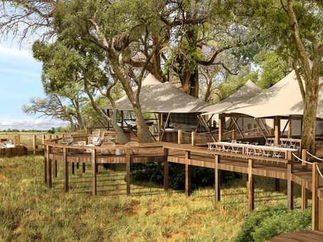 New property anticipated in the Okavango Delta, Botswana