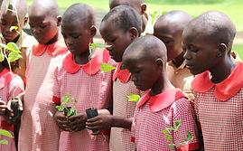 Danckwerts primary school students learn