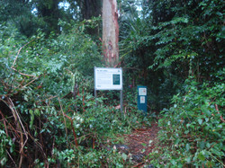 Lamington National Park enterance
