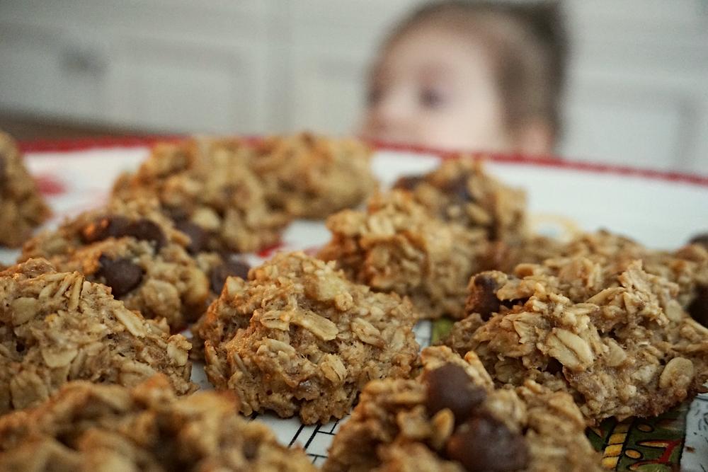 gluten free, vegan optional, toddler- friendly banana oatmeal breakfast cookies