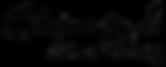 Shiande logo fn2 - 2000x2000 clear_edite