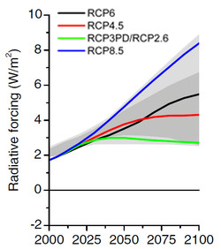 RCPs_Fig