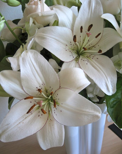 White liliums