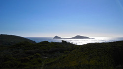 Wilsons Promontory, Vic.