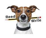 Reed Write