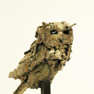 Bronze - Chouette Chevêche