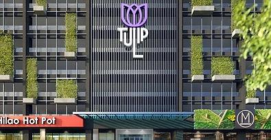 tulip%2520main_edited_edited.jpg