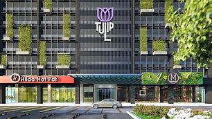 Tulip Entrance Strand (1).jpeg