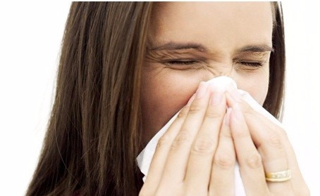 Allergies in the Workplace – a risk for PCBU's to manage!