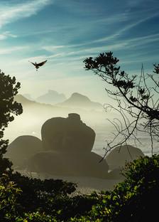 Rio Paisagem2 (8).jpg
