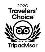 TATravelersChoice-425x500.png