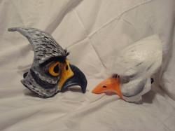 Hawk and Dove