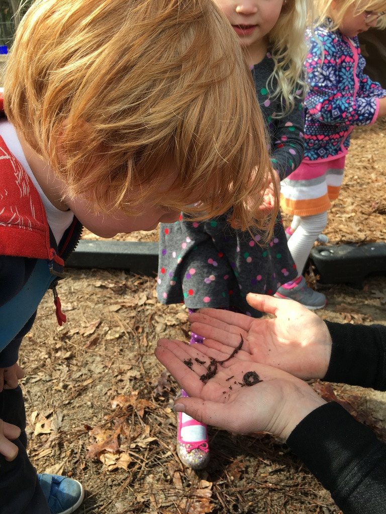 Outdoor play, finding worms