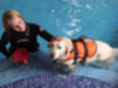 Assisted Dog Hydrotherapy Pool