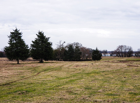 80 Acres of Pasture in Franklin County