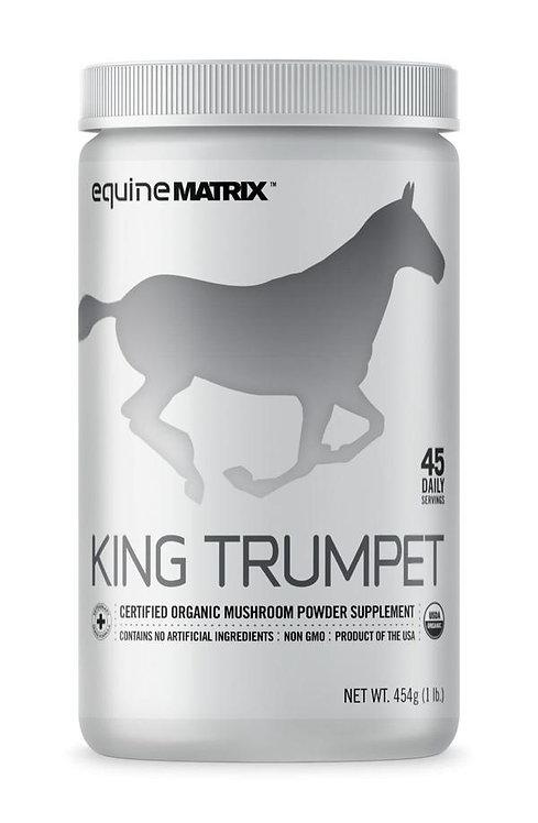 Lion's Mane MUSHROOM SUPPLEMENT FOR HORSES