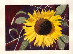 Glad Sunflower