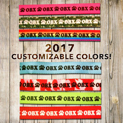 2017 Customizable colors
