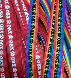 OBX rainbow Leashes and collars